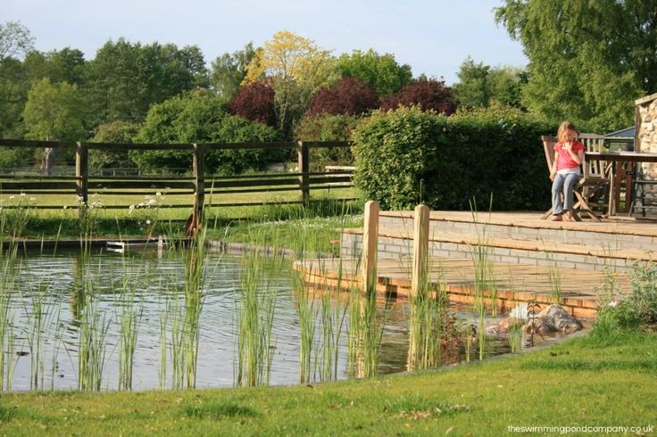 608 Best Eco Swimming Ponds Images On Pinterest Pools Natural Pond And Natural