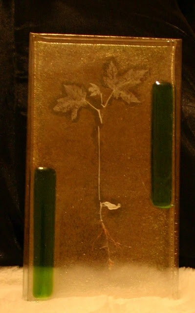 Fused dichroic Glass with organic inclusions: this one's a WHOLE tiny maple plant/ seedling. A real plant.