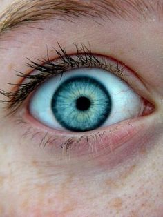 blue and green eyes - Google Search