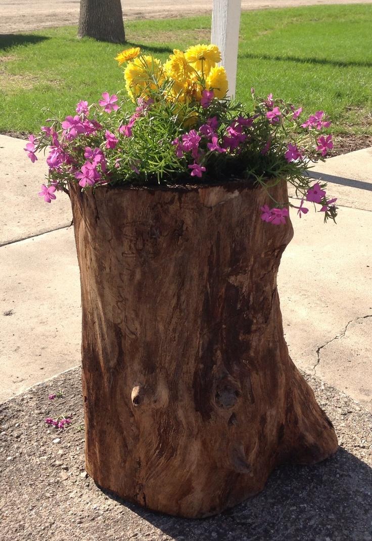 Tree stump planter summer gardening yard ideas for Upcycled tree stumps