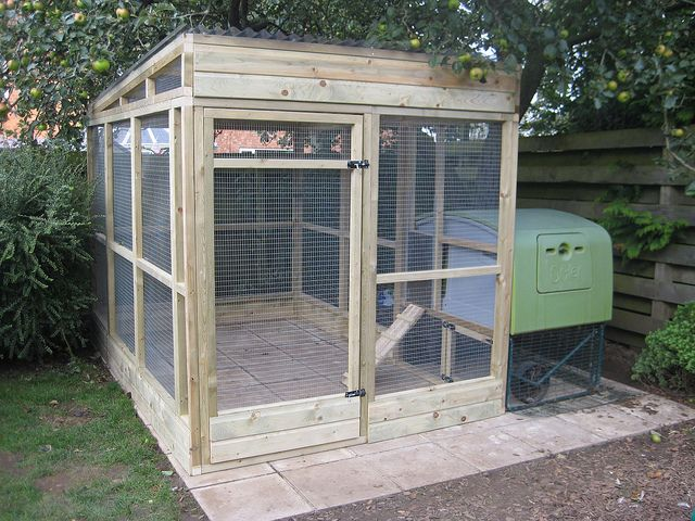 Walk In Chicken Run Chickens Pinterest Chicken Runs