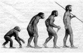 1.El linaje es la línea genealógica masculina que corresponde, dentro del árbol genealógico, y generación tras generación, a la línea paterno-filial que va uniendo a cada persona con su padre.