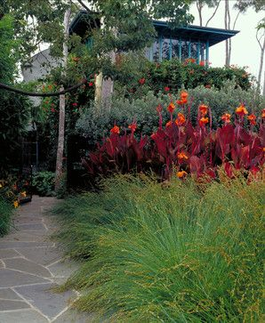 """Red cannas. Good for breaking up conflicting plants...please note:   """"ferns, cannas, shasta daisies, bearded irises, violets and daylilies. Over time these plants create larger spreading growth, which can crowd out other plants and lead to decreased blooms. Carefully dig them up — I like to use a tined garden fork for this — and then gently separate the root ball with your"""""""