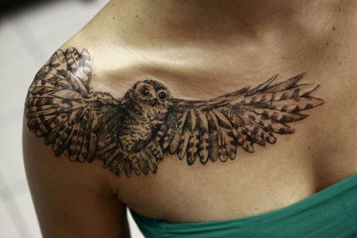 Garth's work at Wildfire Tattoos Cape Town Owl on one shoulder (Caleb) & Hawk/Falcon on other (Corey).