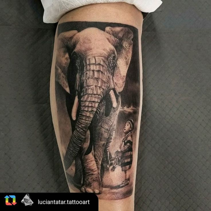 Best Friends tattoo by Artist @luciantatar.tattooart @royalfleshtattoo #chicago #tattooart #chicagotattooartist #blackandgrey #realistictattoo #realism #chicagoartist #elephant #photography #tattoolife #tattoolifeblog #tattoolifemagazine #tattoolover #inkedmag #inkedup #IGdaily  #bnw #tattoomodel #tattooistartmag  #realistictattoo #blackandgreytattoo #bng #stencilstuff #animalart #animaltattoo #tattoosnob #tattoolifemagazine #fkirons #luciantatar_tattooart #BlackandGreyAllDay #Lucian Royal…