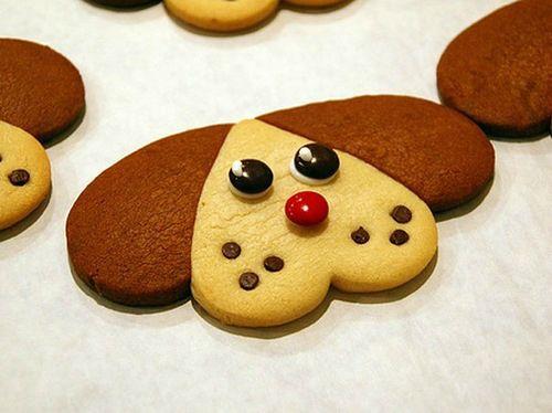 Как приготовить печенье для собак с медом и курагой? http://www.kakprosto.ru/kak-834908-kak-prigotovit-pechene-dlya-sobak-s-medom-i-kuragoy