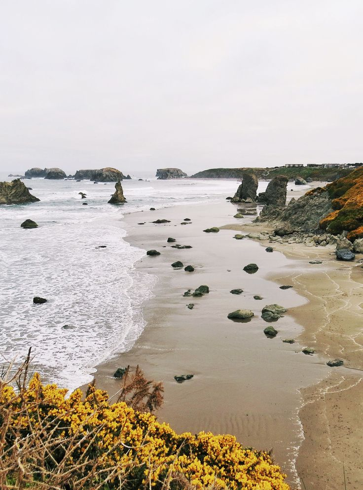 10 Off-Radar Finds Along The Pacific Coast #refinery29