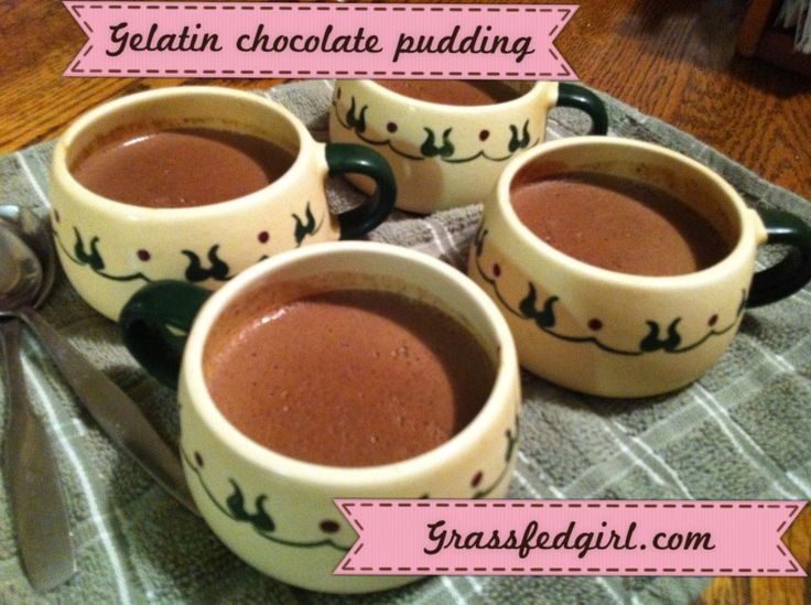 Nourishing Dark Chocolate Gelatin Pudding