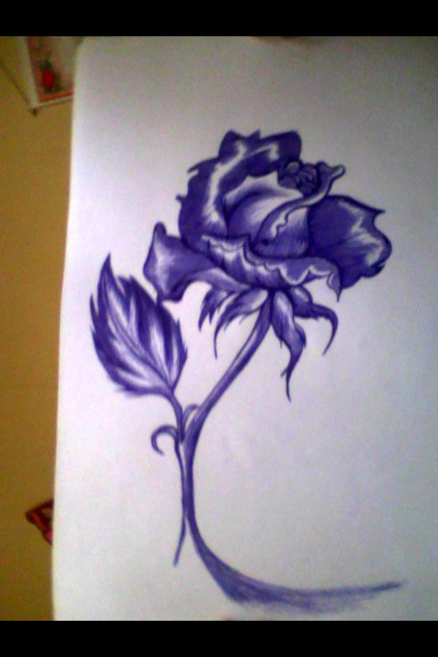 rose drawing blue pen d some art work d by me