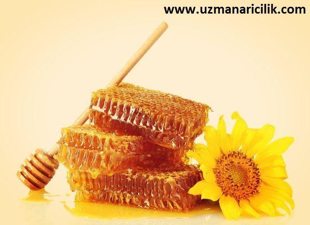 www.uzmanaricilik.com