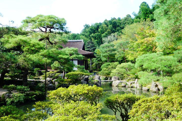 Kyoto. Japan. 2015