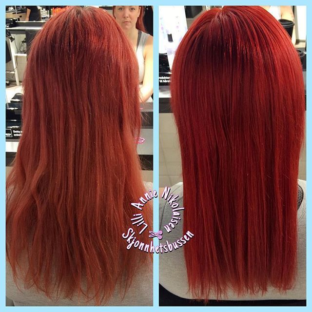 Princess @sunikol got her hair colored by me. #redhead #nikitalærling #nikitaamfinarvik #nikitahair #hair #awesome #lovemyjob #narvik #norge…