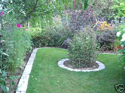 105 Best Images About Lawn Edging On Pinterest Gardens