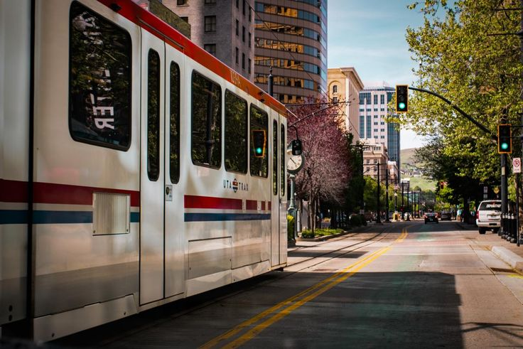 💚 White Black Red and Blue Bus Near Green Leaf Trees - get this free picture at Avopix.com    🆓 https://avopix.com/photo/43059-white-black-red-and-blue-bus-near-green-leaf-trees    #way #road #streetcar #wheeled vehicle #landscape #avopix #free #photos #public #domain