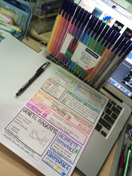 diagramas alineados sobre una laptop con muchos plumones de colores