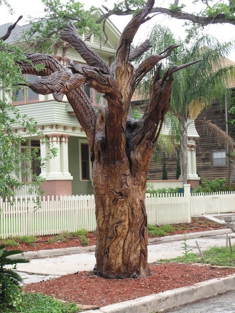 Tree carving in galveston tx trees that were killed by