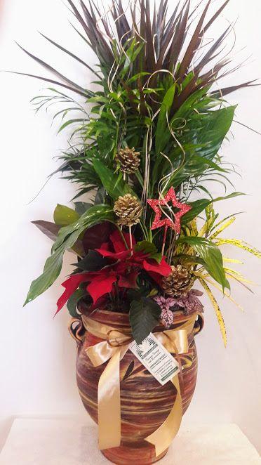 Plants Arrangements Ceramic Pot Big Size Fita se Keramiko