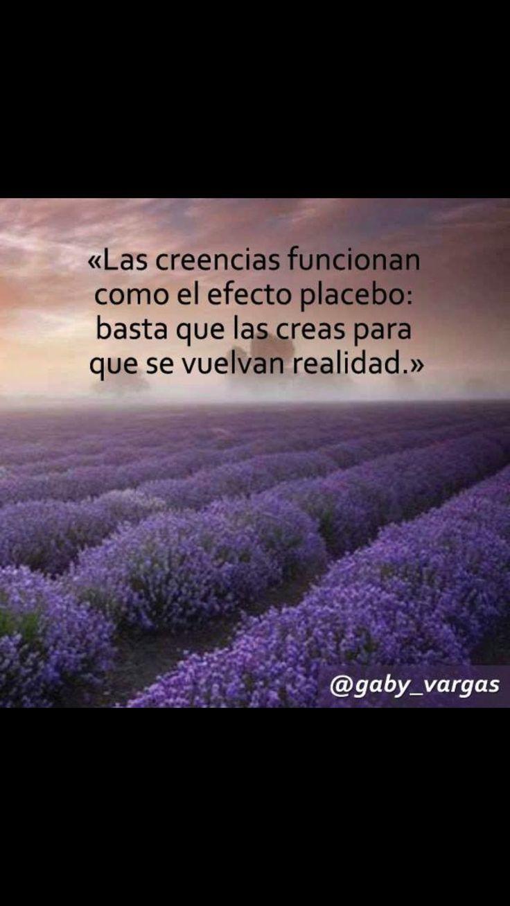 "Gaby Vargas on Twitter: ""https://t.co/pDwz5Y8zZv"""