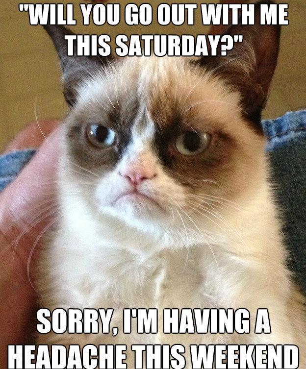 Grumpy Cat Anti-Pickup Lines 7