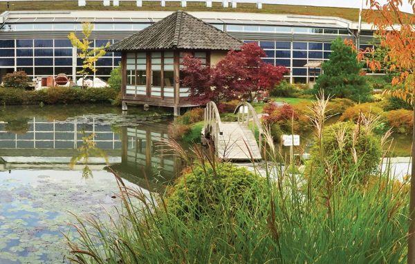 Ontspan in de prachtige tuin bij Wellness Center de Bronsbergen