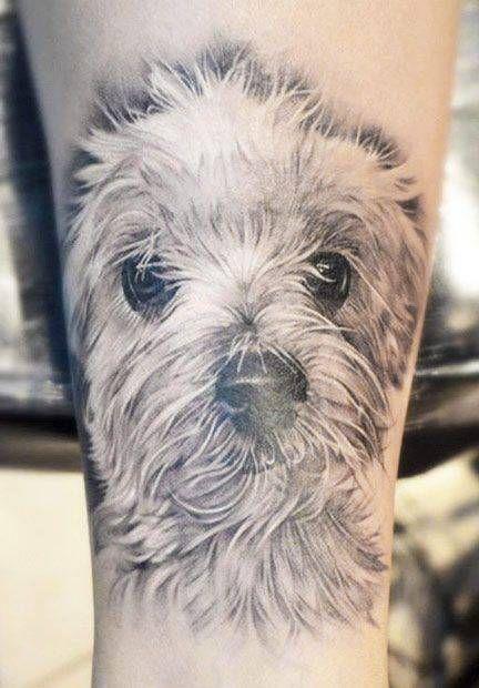 Tatuagem de Cachorros                                                       …