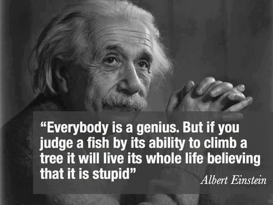 Everybody is a genius;  Beoordeel je medemens en jezelf op de kwaliteiten en niet op de minder sterke kanten