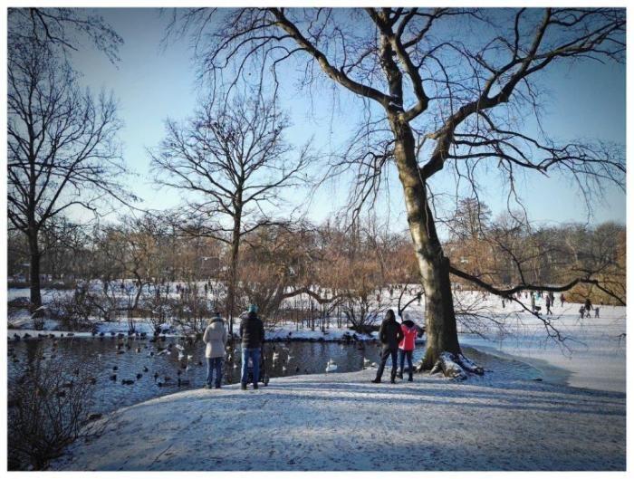 Co robić zimą we Wrocławiu?