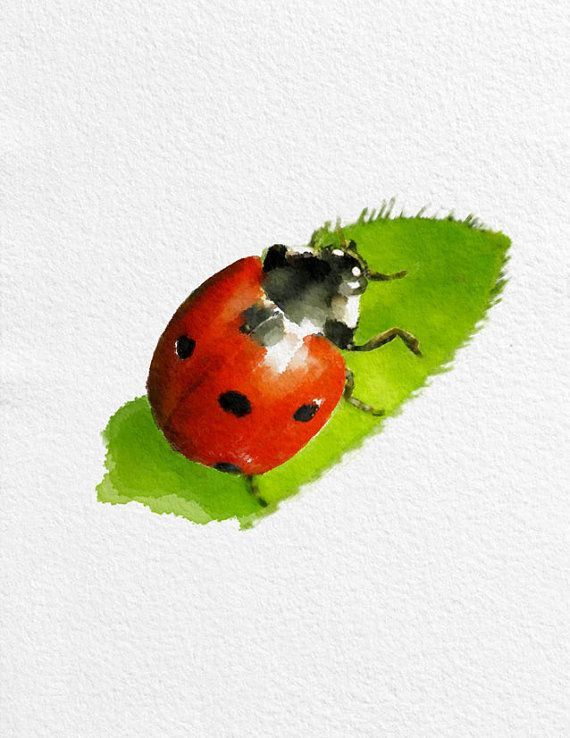 /coccinelle-peinture-art-imprime-animal                                                                                                                                                                                 Plus