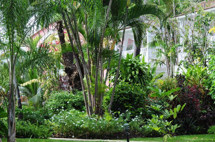 Cobblers Cove Hotel garden