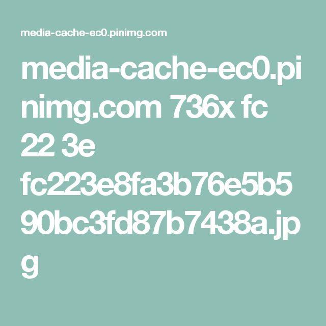 media-cache-ec0.pinimg.com 736x fc 22 3e fc223e8fa3b76e5b590bc3fd87b7438a.jpg