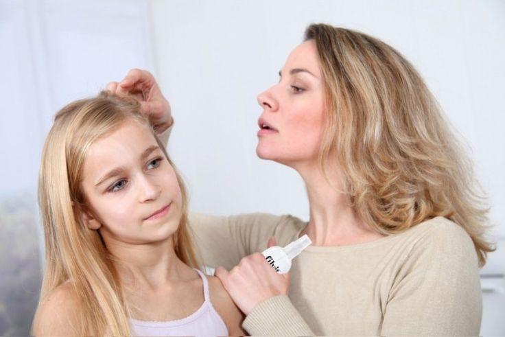 Los piojos afectan tanto a niños como adultos. Aquí, un remedio casero para eliminarlos.