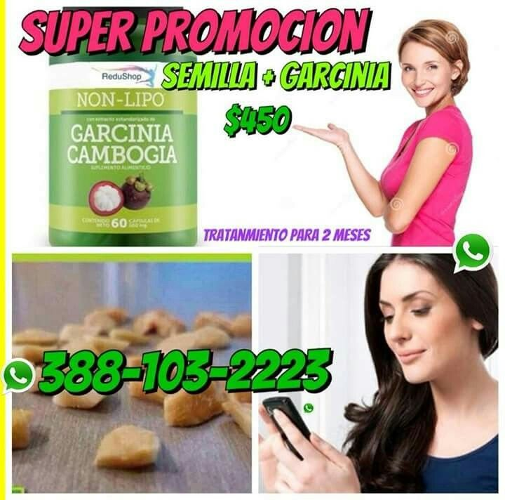 orgain organic protein plant-based powder weight loss
