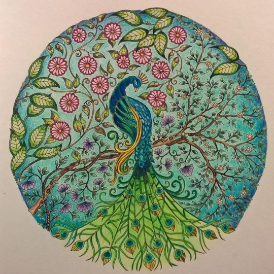 Johanna Basford | Picture by Brenda Dockery | Colouring Gallery