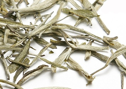 Silver Needle Tea--aids in fat loss, decreases fat storage, loaded with antioxidants.