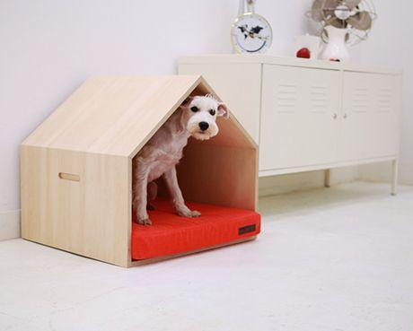 pet furnitures