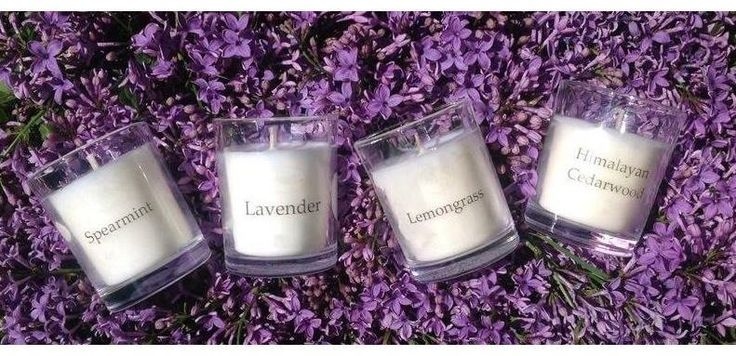 Due to high demand, we have brought back our range of beautiful essential oil soy wax candles. Visit our website to checkout our range! http://www.trielleadelaidehills.com/