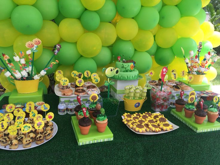 Plants vs Zombies birthday party