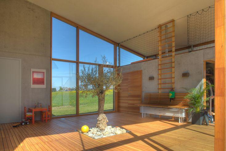 Gallery of Atriumhaus am Waldrand / Kleboth Lindinger Dollnig - 13