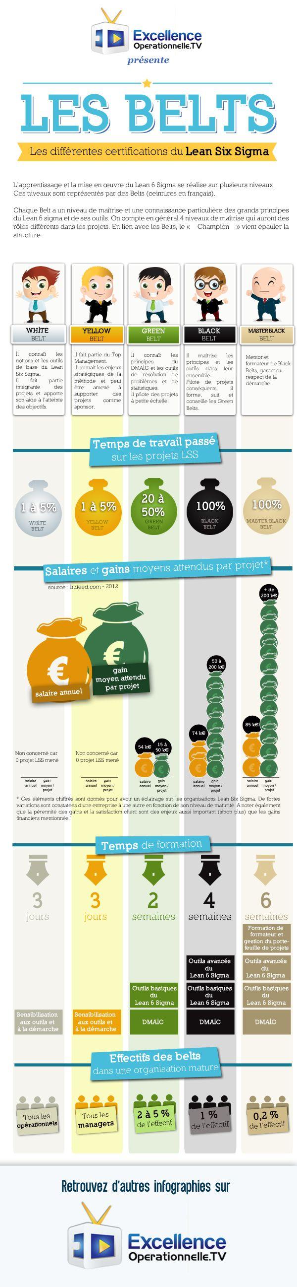 Retrouvez l'infographie expliquant les différents niveaux des Belts dans les organisations Lean Six Sigma ! Et vous, vous êtes Yellow, Green ou Black Belt ?