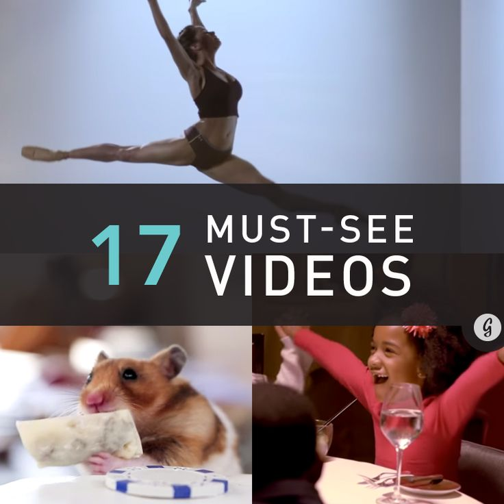 17 Must-See Viral Videos That'll Make You Laugh, Cry, and Inspired to Be Healthier #happy #healthy #mustwatch