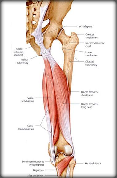 5 Reasons You Have Tight Hamstrings
