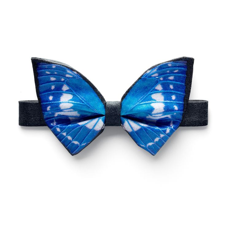 Morpho Cypris Bow Tie | One Wolf | Wolf & Badger