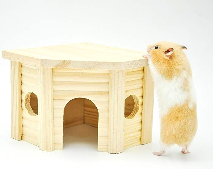 Animal Supplies On Sale In 2020 Hamster House Small Pets Cool Hamster Cages
