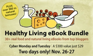 This sale is amazing!  $373 of eBooks and products for $29, today and tomorrow only.  Makes a really thoughtful holiday gift. :)