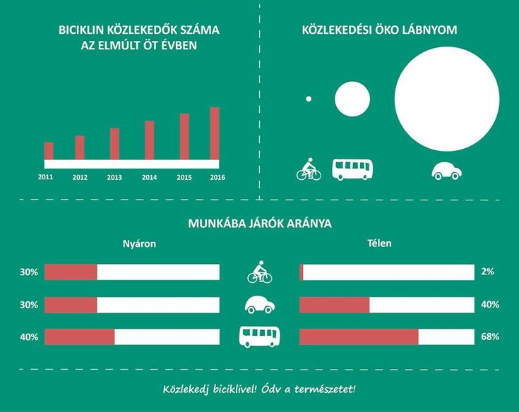 Biciklis infografika Szabó Zoltán | Kreatív Webdesign Tanfolyam