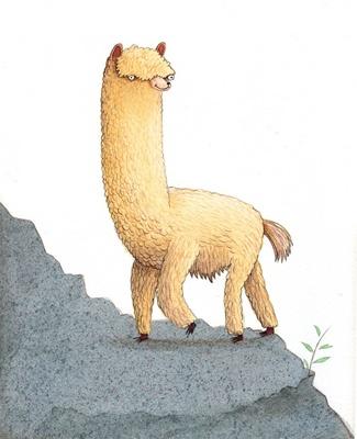 Alpaca by Daniel Salmieri -- very cool style ...