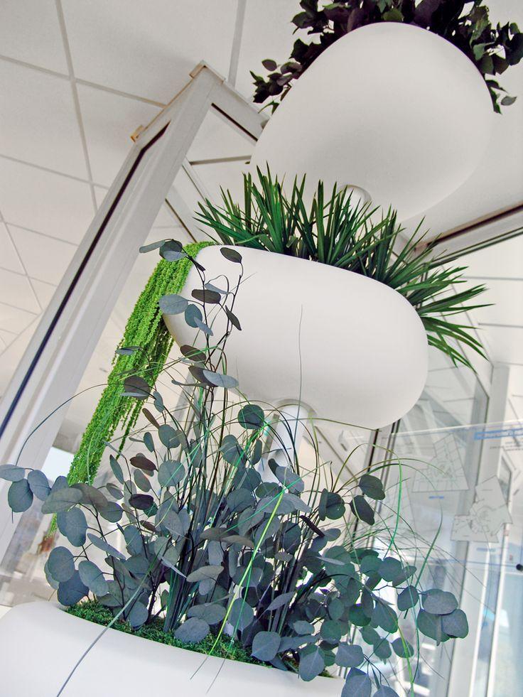 Agencement végétal d'intérieur. Plantes stabilisées.Création et réalisation Adventive. Interior plant Designer. #serralunga
