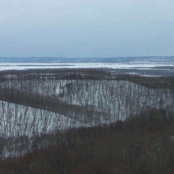 홋카이도 쿠시로의 넓은 습지