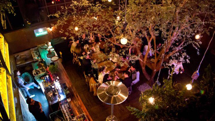 Lo mejor de la vida nocturna de la Ciudad de México, por zonas. Desde Polanco, San Ángel y Coyoacán, hasta la Roma, la Condesa y el Centro.
