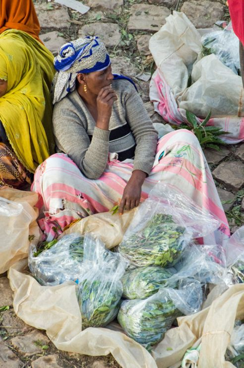 Chat is  the ever-present drug in Ethiopia - as well as in Arabia. Market-women sell the twigs of the chat bush on the Shoa-gate-market right at the walls of old town, Harar, Ethiopia